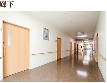 廊下 車椅子が2台すれ違える幅の廊下をご用意。いつでも快適に、安心にご利用いただけます。