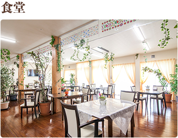 食堂 お食事は手作りでご提供いたします。食堂で談笑しながら、楽しいお食事タイムをお過ごし下さい。
